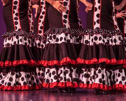 tn_The Sixth Baila Flamenco Festival_VT18215.jpg