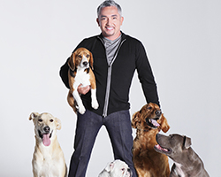 tn_cesarmillan_AS14115.jpg