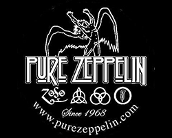 tn_purezepplin_pt20815.jpg